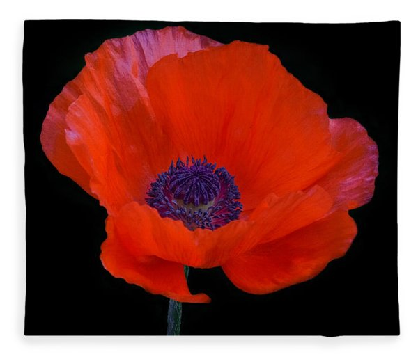 Fleece Blanket featuring the photograph Poppy  by Garvin Hunter