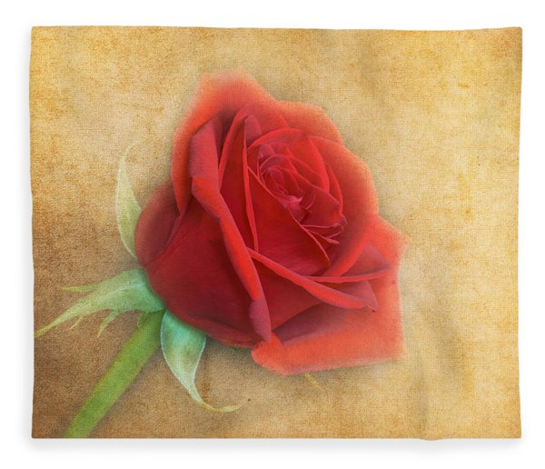 Fleece Blanket featuring the photograph Red Rose  by Garvin Hunter