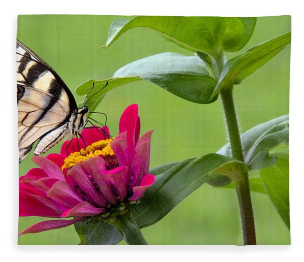 Tiger Swallowtail Butterfly On Zinnia Fleece Blanket
