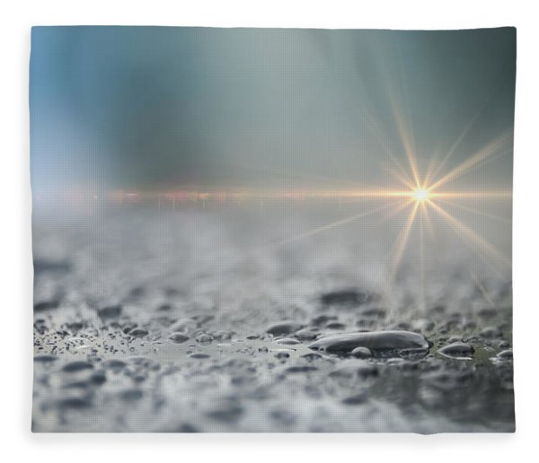 Fleece Blanket featuring the photograph After The Rain by Carolyn Marshall