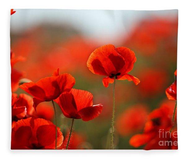 Poppy Dream Fleece Blanket