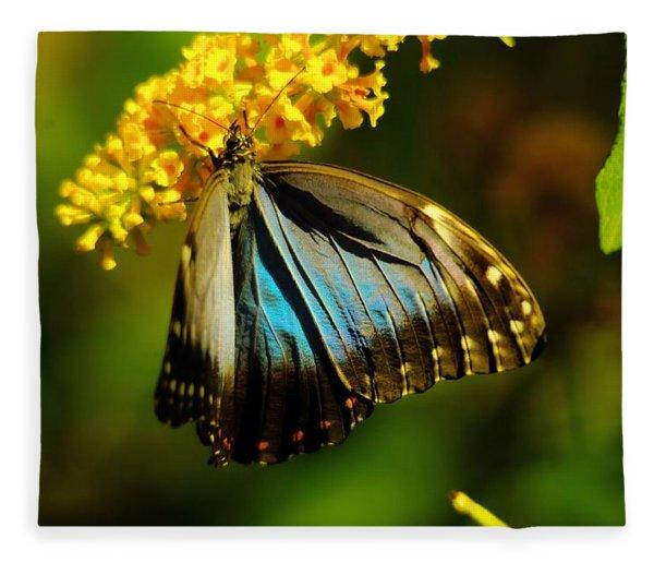A Beautiful Butterfly Fleece Blanket