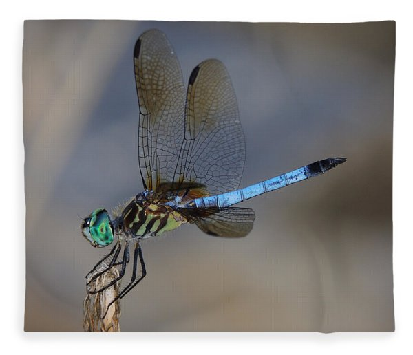 Fleece Blanket featuring the photograph A Dragonfly Iv by Raymond Salani III