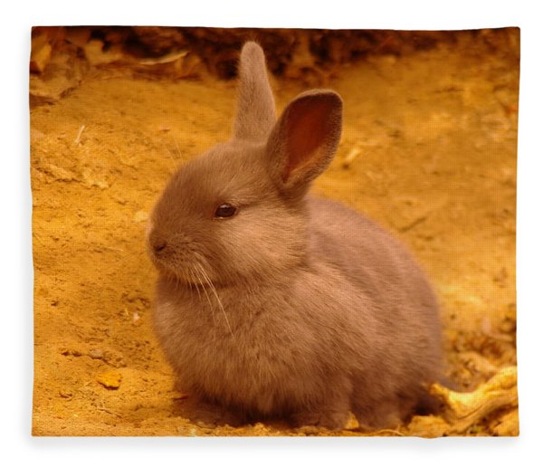 A Little Bunny Fleece Blanket