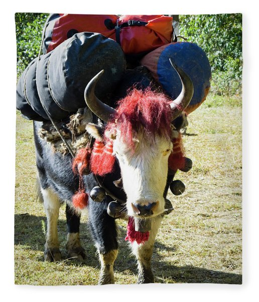 A Pack Animal A Yak Carrying Trekkers Fleece Blanket
