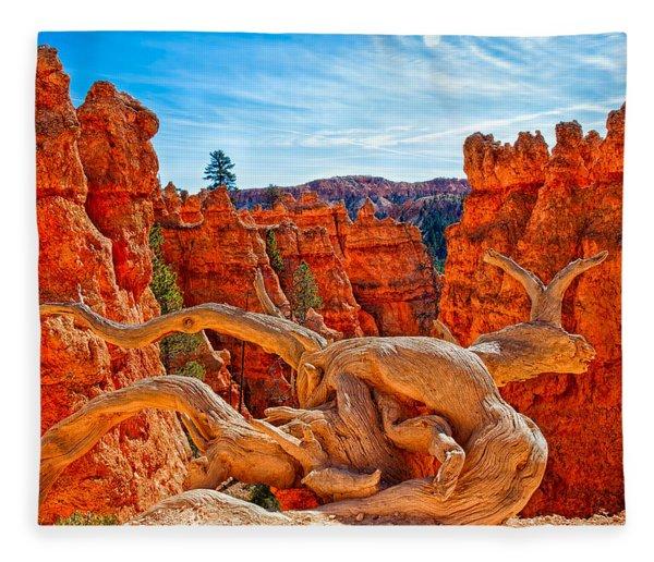 An Object For Imagination Fleece Blanket