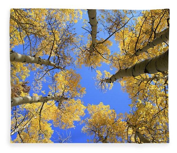 Aspens Skyward Fleece Blanket