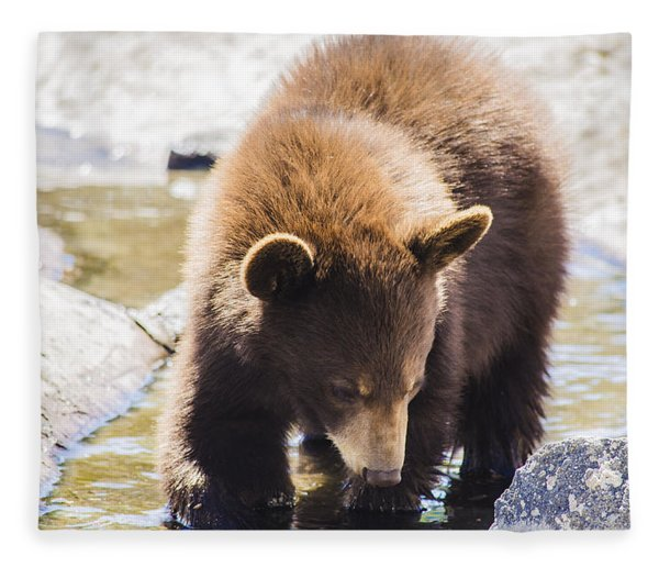 Bear Cub Fleece Blanket