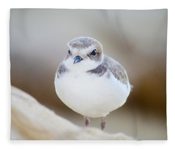 Beautiful Bird Fleece Blanket