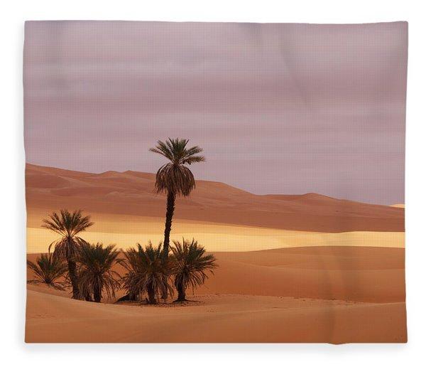 Beautiful Desert Fleece Blanket