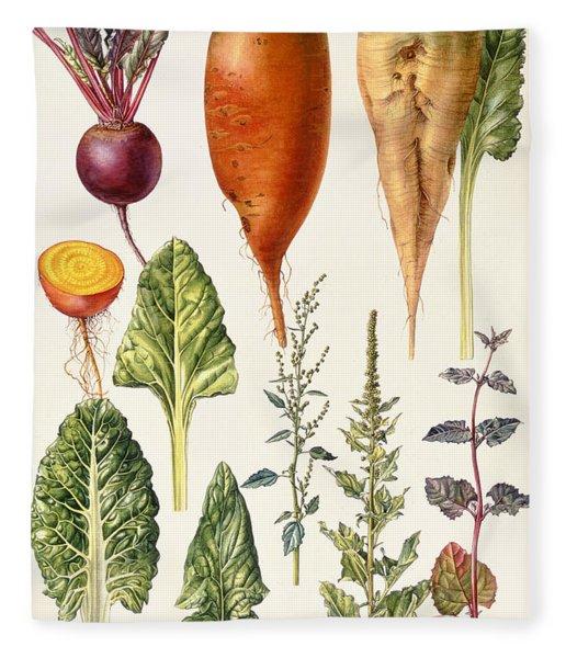 Beetroot And Other Vegetables Wc Fleece Blanket