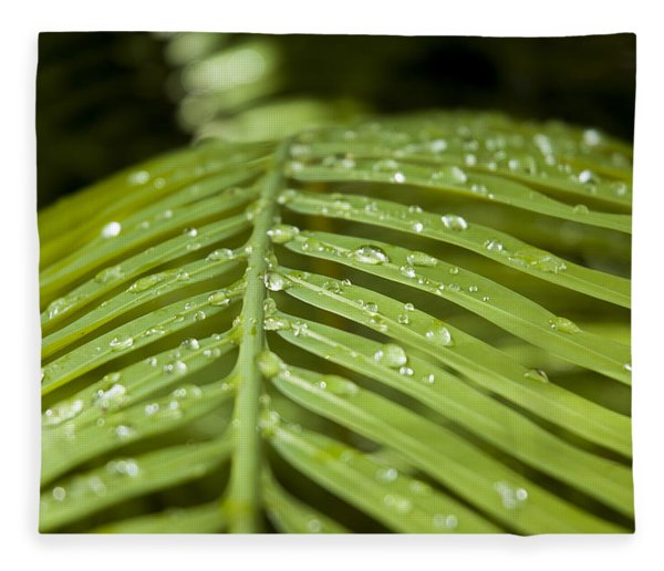 Fleece Blanket featuring the photograph Bending Ferns by Carolyn Marshall