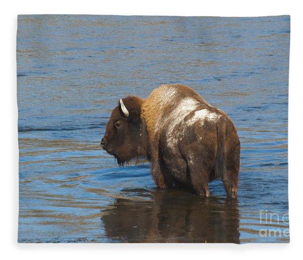 Bison Crossing River Fleece Blanket
