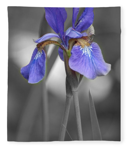 Black And White Purple Iris Fleece Blanket
