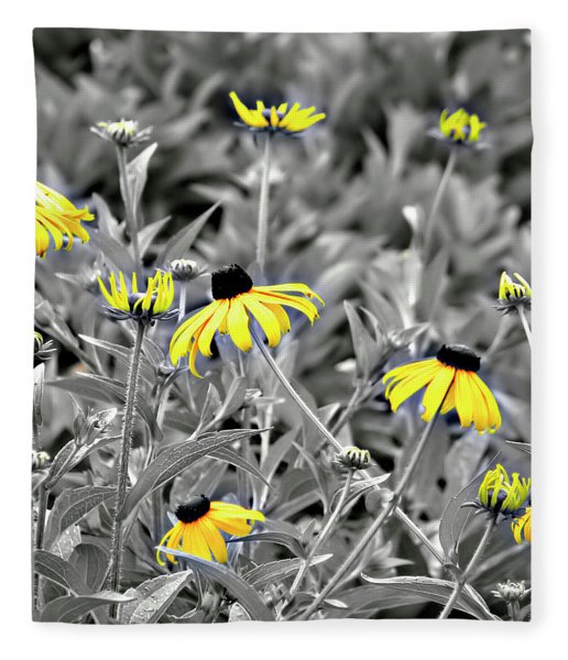 Fleece Blanket featuring the photograph Black-eyed Susan Field by Carolyn Marshall