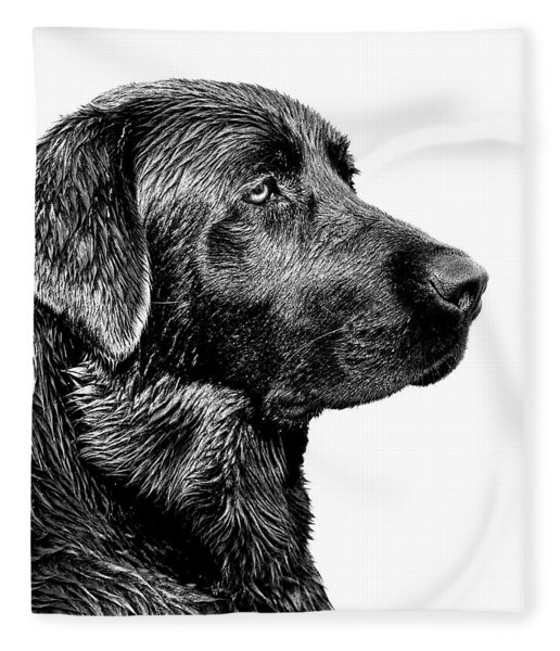 Black Labrador Retriever Dog Monochrome Fleece Blanket