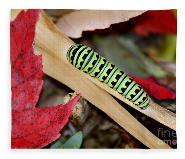 Black Swallowtail Butterfly Caterpillar Fleece Blanket
