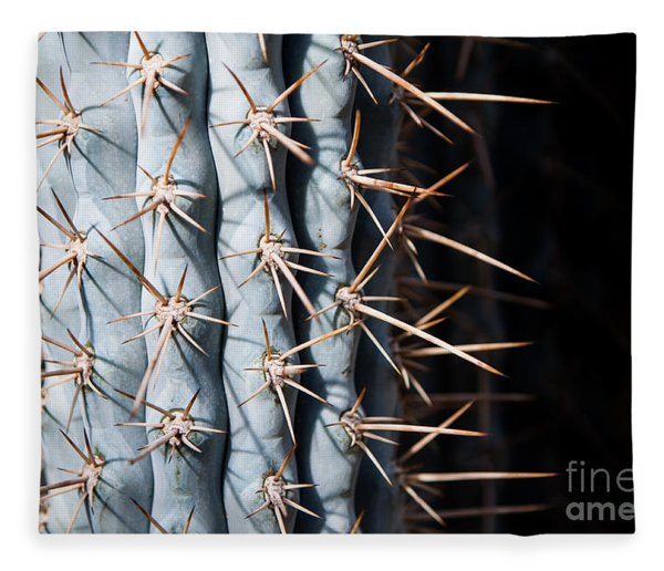 Blue Cactus Fleece Blanket