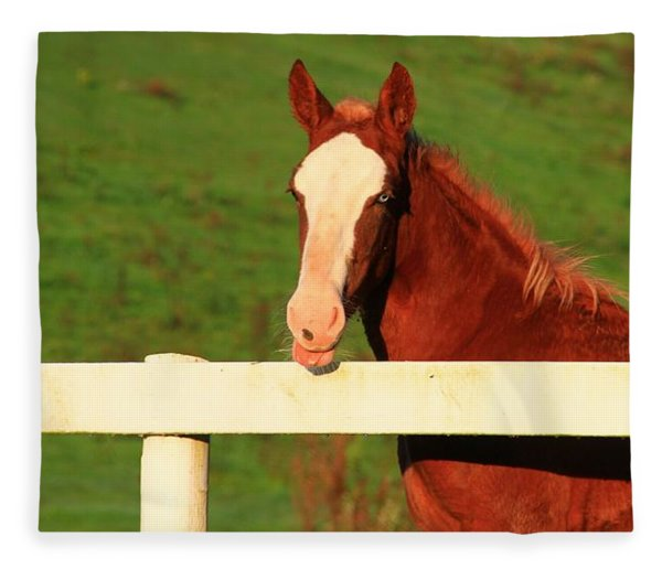 Blue Eyed Horse Fleece Blanket