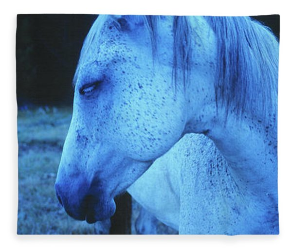Blue Horse In Field Fleece Blanket