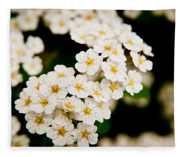 Bridal Veil Spirea Fleece Blanket