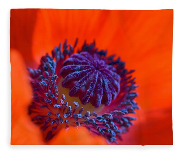Fleece Blanket featuring the photograph Bursting With Colour by Garvin Hunter