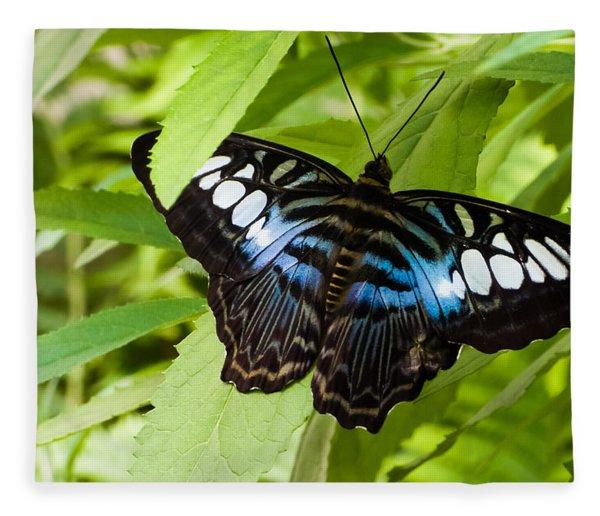 Butterfly On Leaf   Fleece Blanket