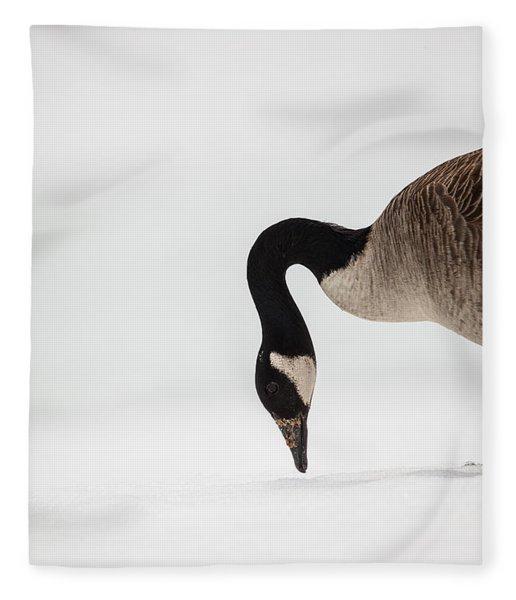 Canada Goose Point Fleece Blanket
