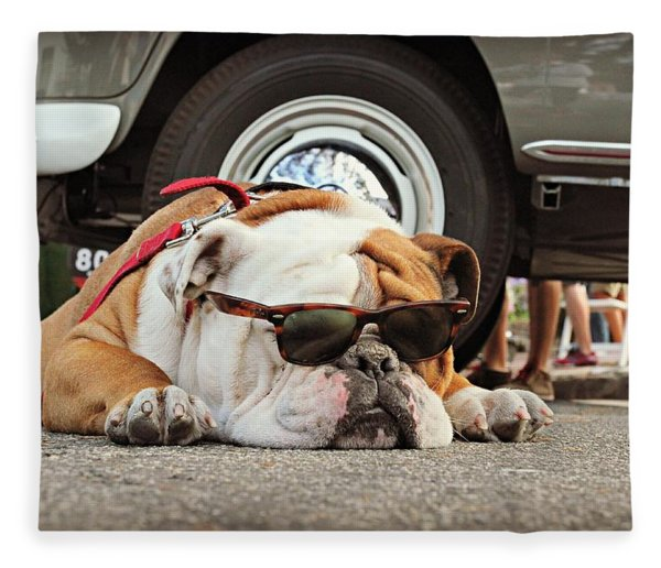 Carmel Cool Dog Fleece Blanket