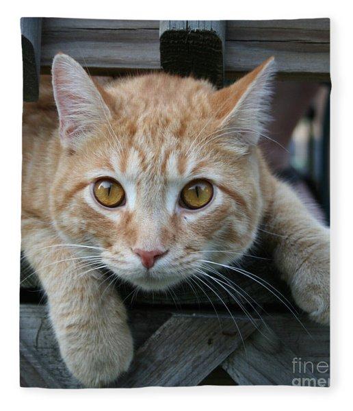 Cool Cat Named Calvin Fleece Blanket