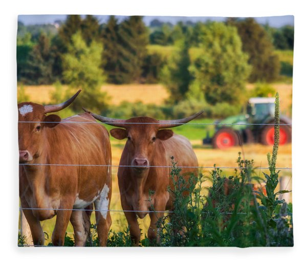 Fleece Blanket featuring the photograph Curiousity by Garvin Hunter
