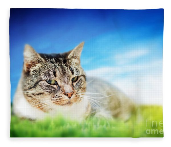 Cute Cat Lying On Green Spring Grass On Sunny Day Fleece Blanket