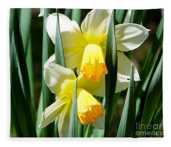 Daffodil Hug Fleece Blanket