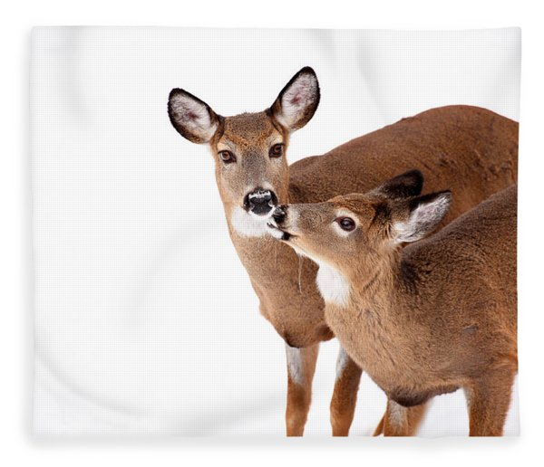 Deer Kisses Fleece Blanket