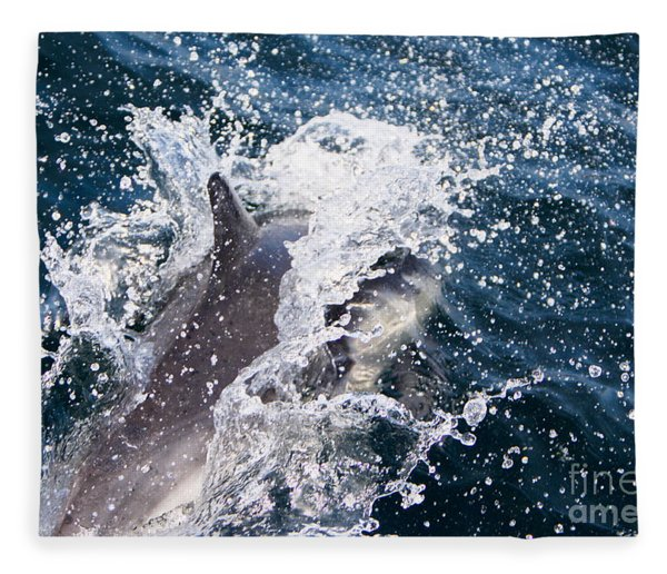Dolphin Splash Fleece Blanket