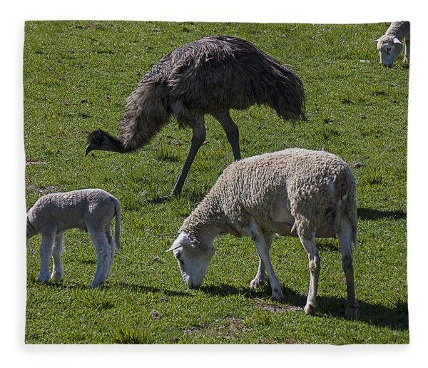 Emu And Sheep Fleece Blanket