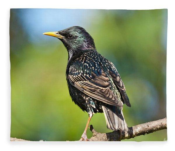 European Starling In A Tree Fleece Blanket