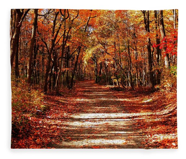 Fleece Blanket featuring the photograph Fall At Cheesequake by Raymond Salani III