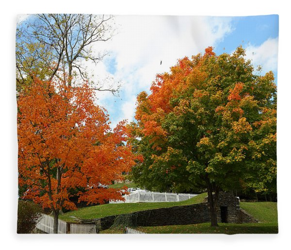 Fall Foliage Colors 09 Fleece Blanket