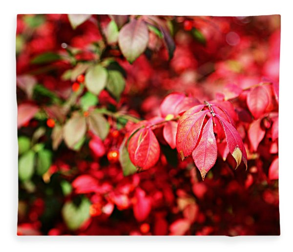 Fall Foliage Colors 10 Fleece Blanket
