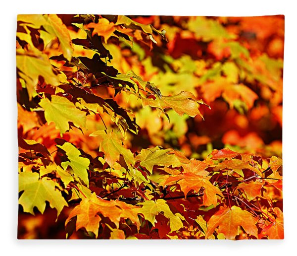 Fall Foliage Colors 13 Fleece Blanket