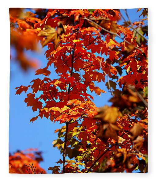 Fall Foliage Colors 15 Fleece Blanket