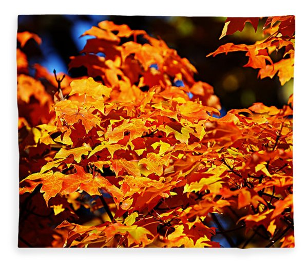 Fall Foliage Colors 16 Fleece Blanket