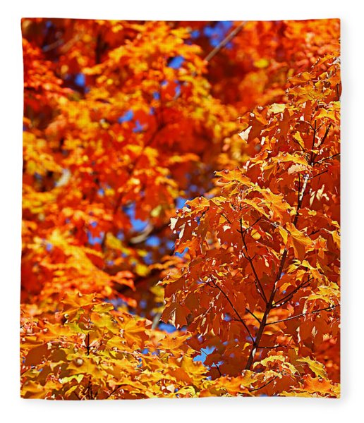 Fall Foliage Colors 17 Fleece Blanket