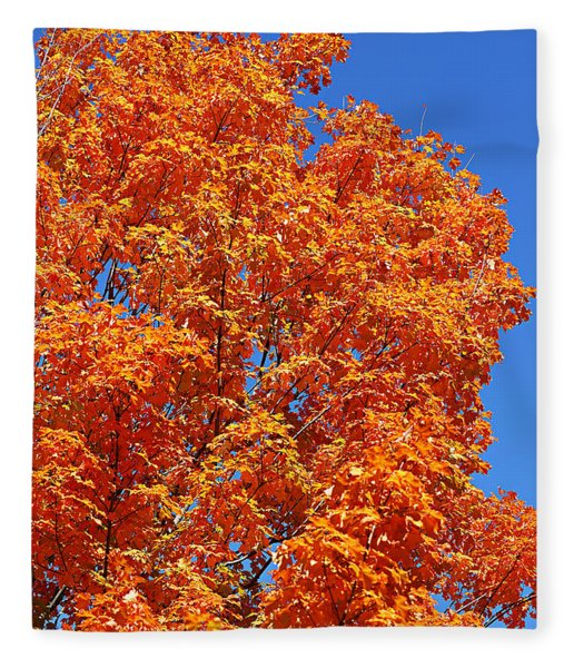 Fall Foliage Colors 18 Fleece Blanket