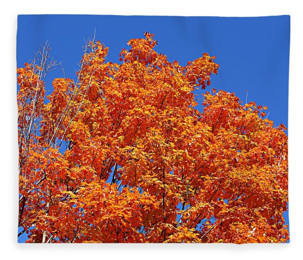 Fall Foliage Colors 19 Fleece Blanket