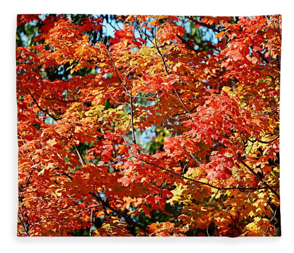 Fall Foliage Colors 22 Fleece Blanket