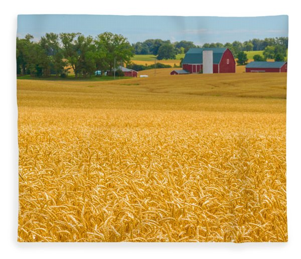 Fleece Blanket featuring the photograph Fields Of Gold by Garvin Hunter