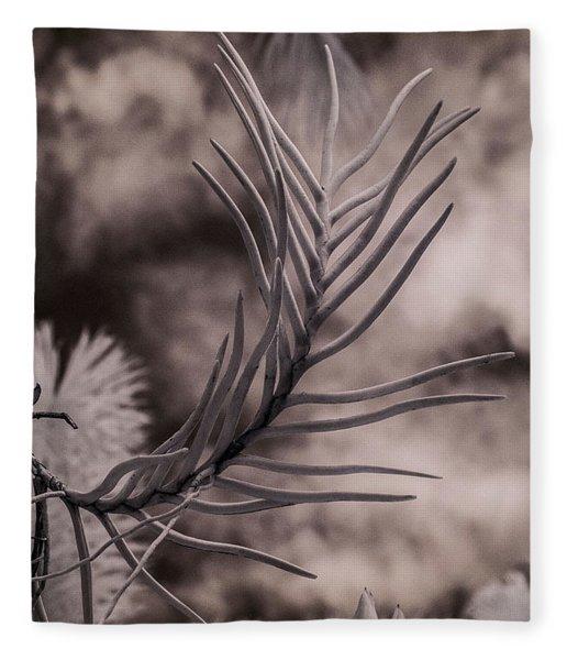 Florida Flora 1 Fleece Blanket