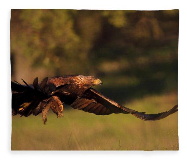 Golden Eagle On The Hunt Fleece Blanket